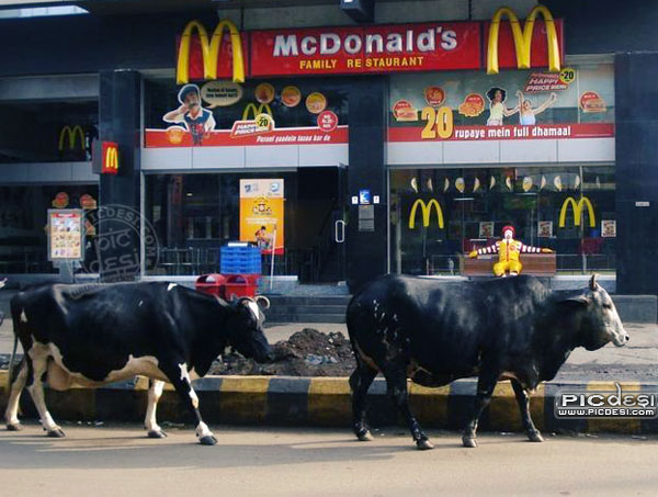 McDonalds India Family Restaurant India Funny Picture