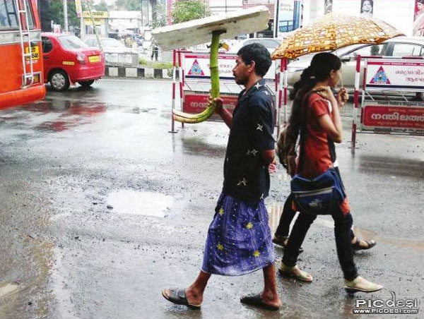 Indian Concept Umbrella India Funny Picture