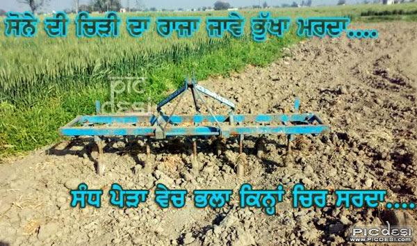 Sone Di Chidi Da Raaja Punjabi Picture