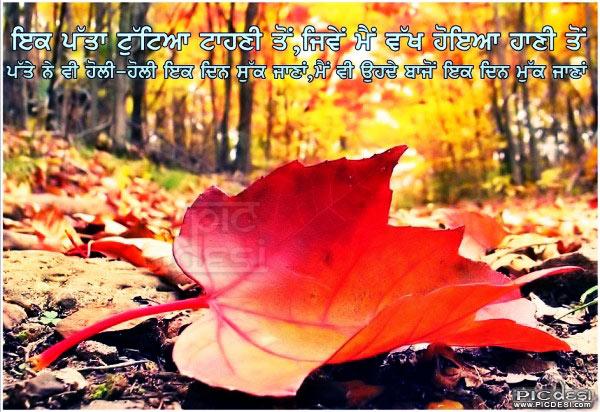Ik Patta Tuttya Tahni Ton Punjabi Sad Picture