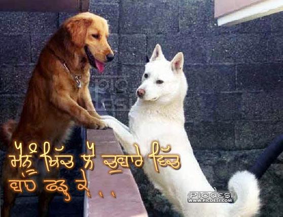 Khich Le Chubbare Wich Punjabi Funny Picture