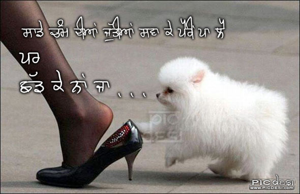 Saade Chamm Diyan Juttiyan Punjabi Funny Picture