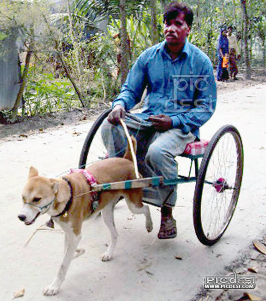 Desi Funny Ride India Funny