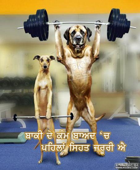 Pehlan Sehat Jaroori Aa Punjabi Funny Picture