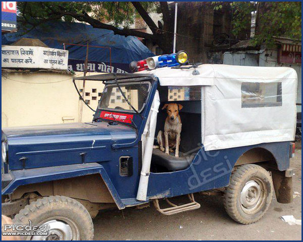 India Police Jeep India Funny Picture