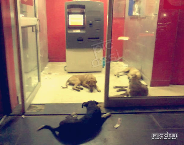 Indian ATM High Security System India Funny Picture