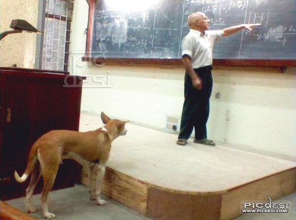 Professor Teaching Dog in Class India Funny Picture