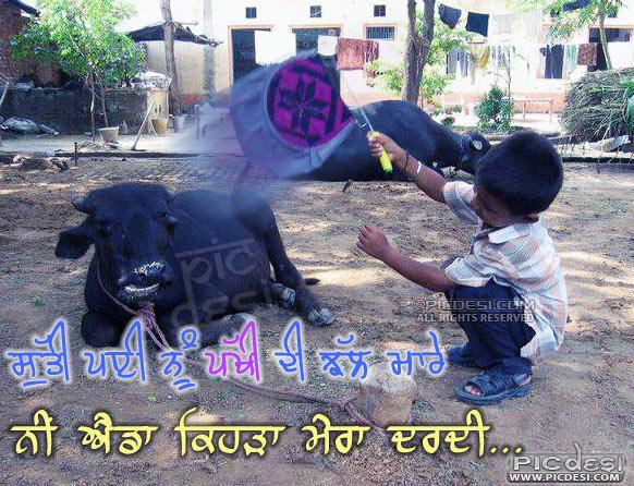 Sutti payi nu pakhi di jhal maare Punjabi Funny Picture