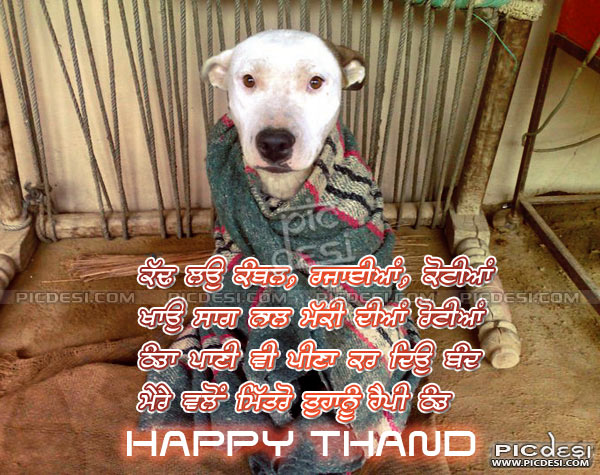 Mitro Tuhanu Happy Thand Punjabi Funny Picture