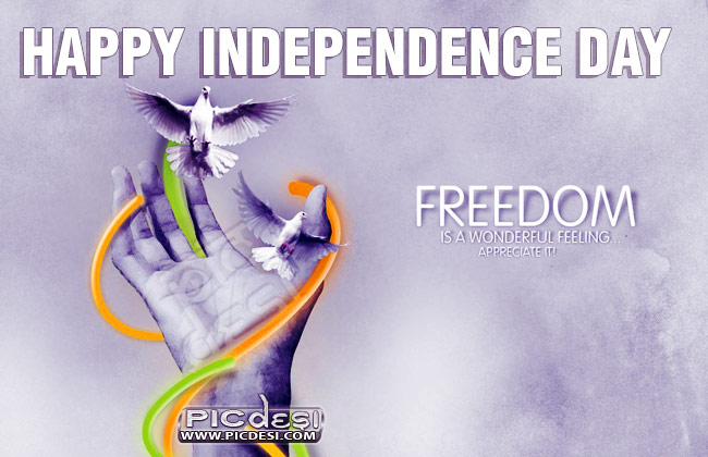 Happy Independence Day Freedom Independence Day Picture