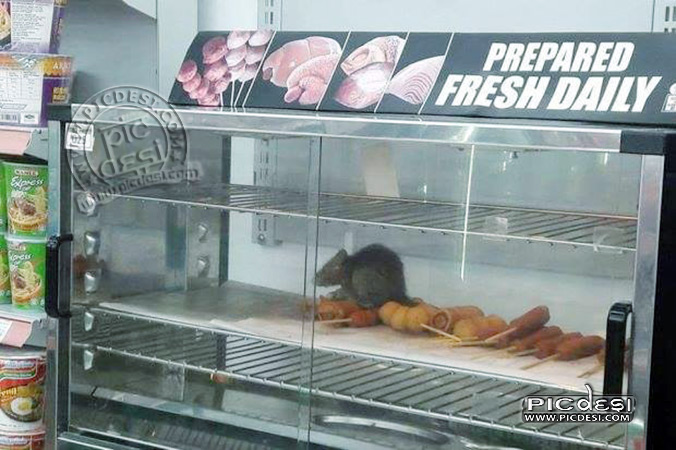 Daily Fresh Food Shop India Funny  Picture
