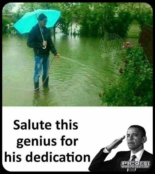Funny Pic Salute This Genius Funny Picture