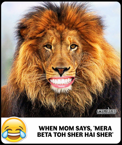 Mera Beta Sher Hai Hindi Funny Picture