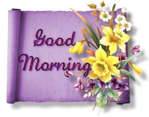 Good Morning Yellow Flowers Card Good Morning
