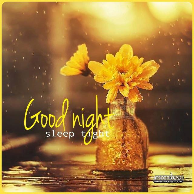 Good Night Sleep Tight Good Night Picture