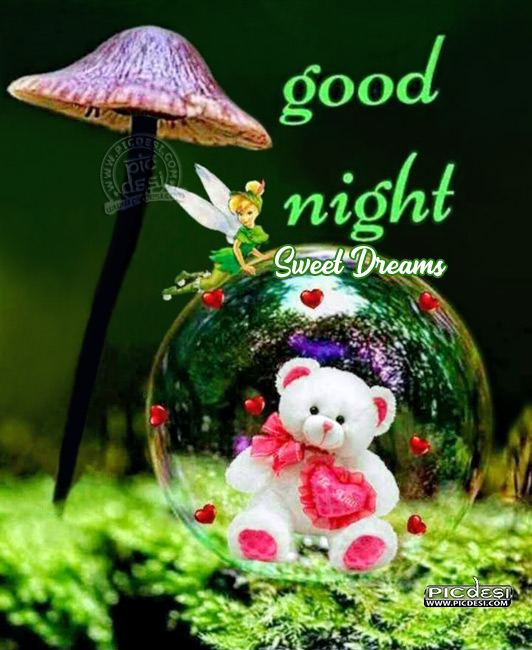 Good Night Teddy Gift Good Night Picture