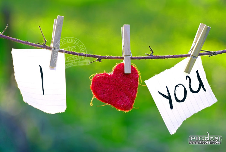I Love You Hanging Note Love Picture
