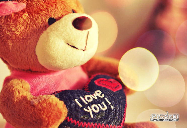 Teddy Bear I Love You Love Picture