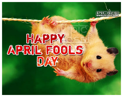 Happy April Fools Day Funny Hamster April Fools Day