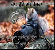 Link to Photo Khichni Gwandne Teri